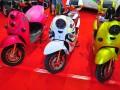 2015中国(重庆)摩托车、电动车及新能源汽车展 (27)