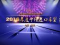 2016年度十佳进口车型_2016中国摩托车行业年度十佳进口车型