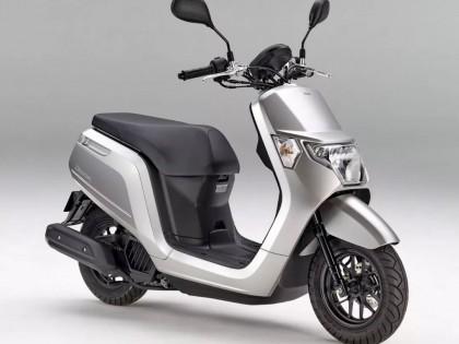 Honda 向本土市场发布四款新图案 2019 小踏板