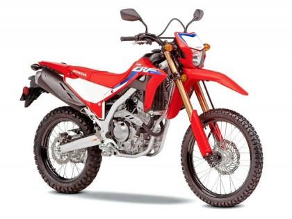 Honda 新一代 CRF300L、Rally:细节简介
